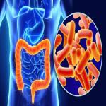 慢性肠炎的黄金疗法-------每天一杯臭氧水